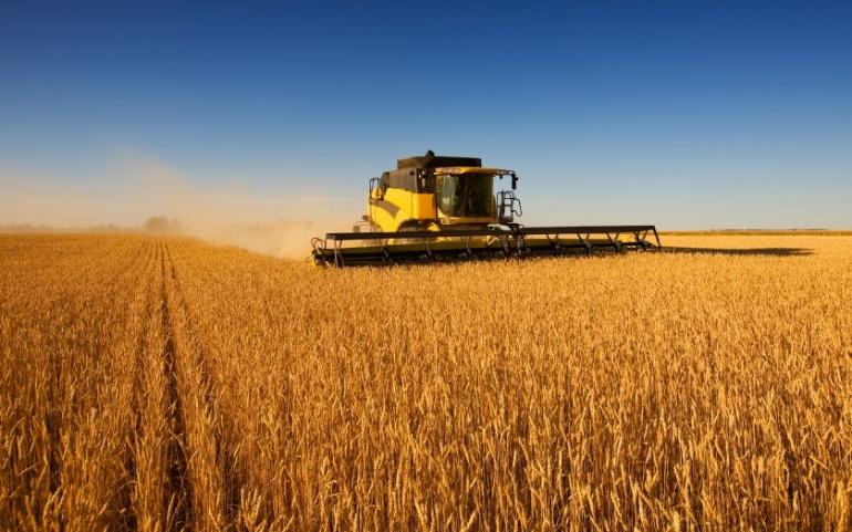 Équilibre des relations commerciales dans le secteur agricole et alimentaire
