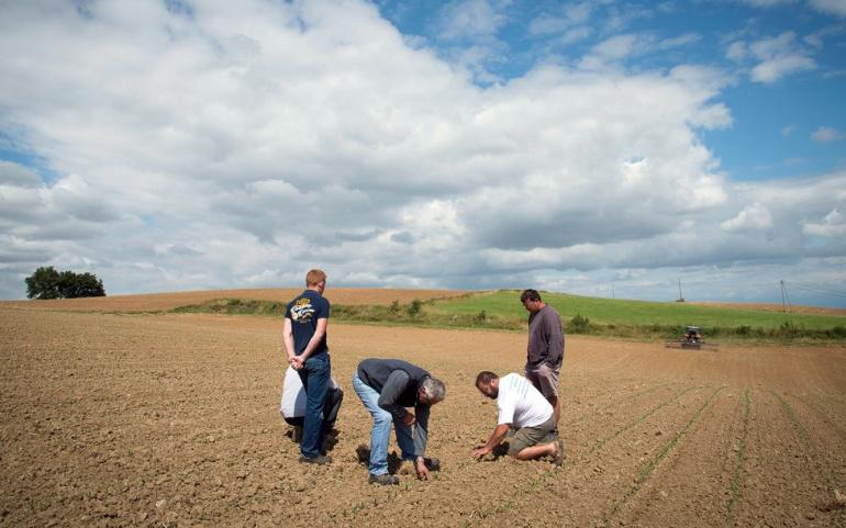 Difficultés des établissements de formation agricole